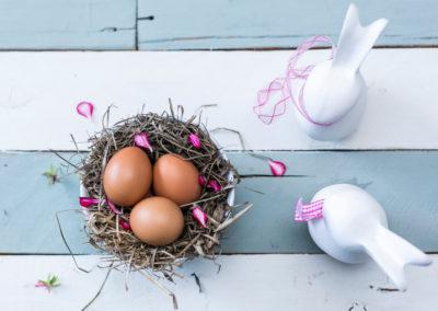 bird-nest-bird-s-nest-decoration-1129444